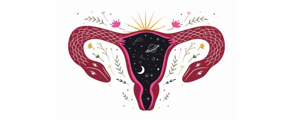 Transiciones reproductivas - WishGarden Herbs